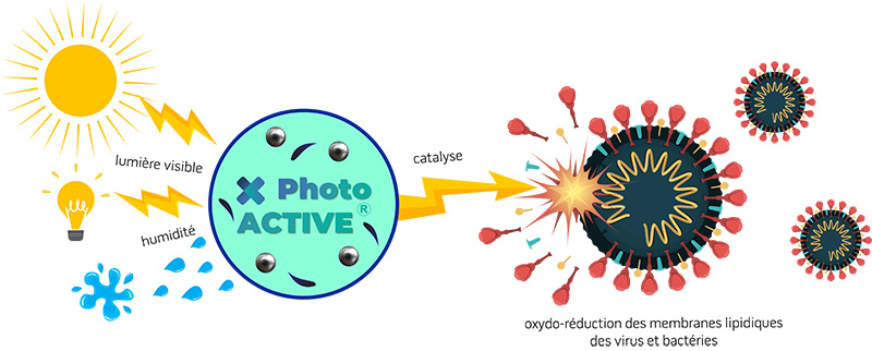 photoactive principe de fonctionnement catalyse d'oxydo reduction
